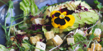 Healthy Salad Seeds For The Soul Thumb
