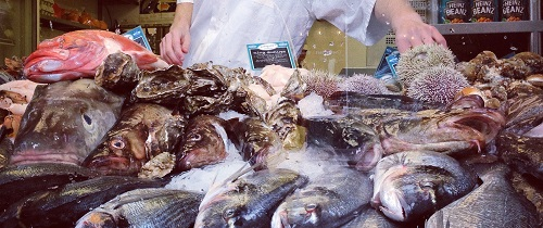 Fish Monger Image With Fish And Arms